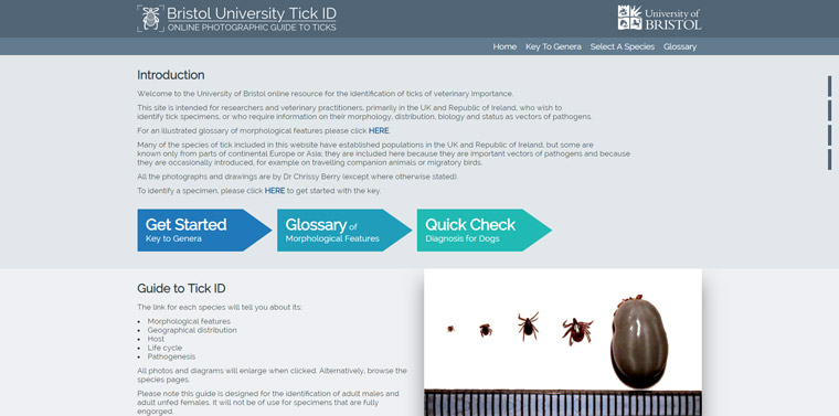 Bristol University Tick ID